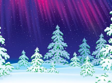 snowcovered: Northern Lights shine over the snow-covered forest