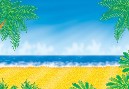 Beach in sunny day