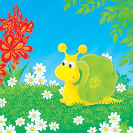 glade: Snail walking on the green glade