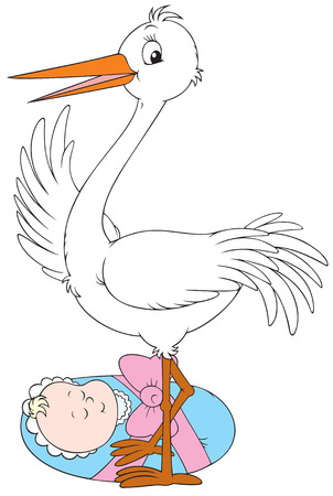 Stork and newborn Vector