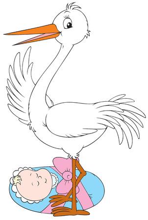 recently: Stork and newborn