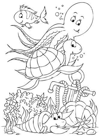 hermit: Octopus, turtle, fish and hermit crab