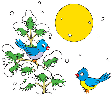 two birds and small snow-covered pine Vector