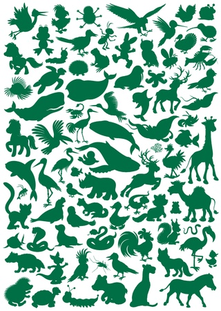 Big set of animal silhouettes  Vector