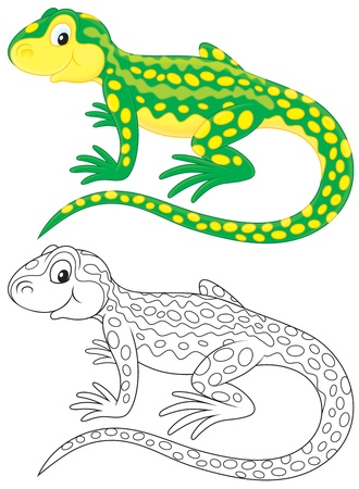 the lizard: Green lizard with yellow spots Stock Photo