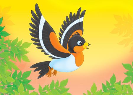 bramble: bramble finch