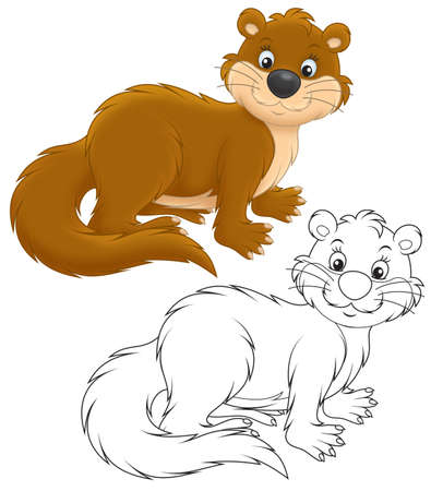 otter: Otter
