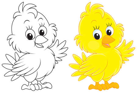 Little yellow chick Stock Vector - 23291214
