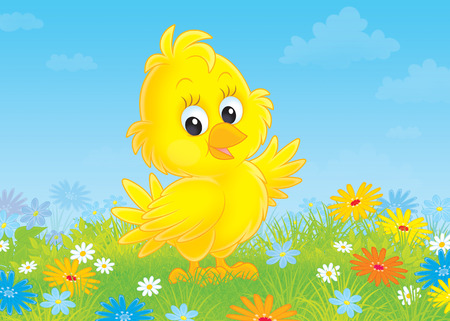 chuck: Little yellow nestling on a flowery meadow