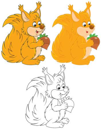 Squirrel Stock Vector - 23866782