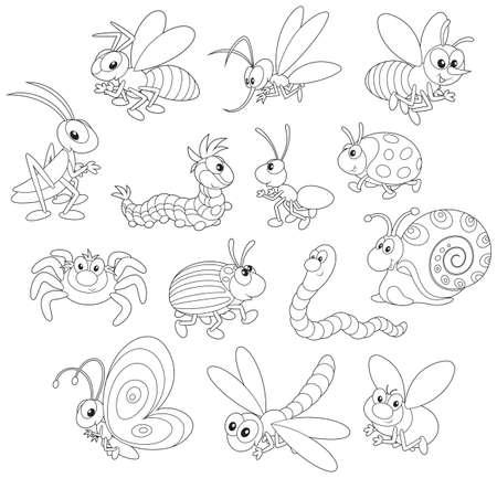 ver de terre cartoon: Insectes