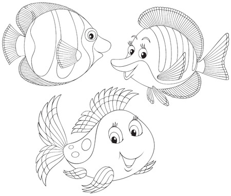 outline drawing of fish: Coral fishes Illustration
