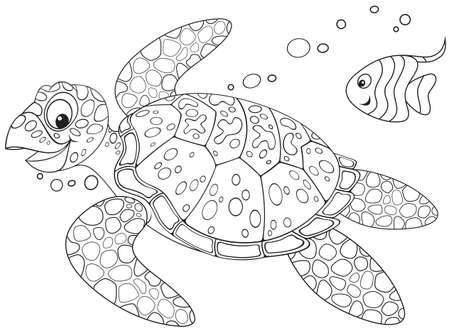 outline drawing of fish: Marine turtle swimming with a small fish