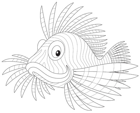 exotic fish: scorpion fish Illustration