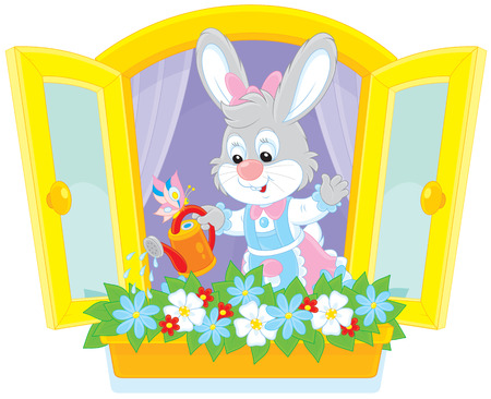 cottontail: Easter Bunny watering window flowers Illustration