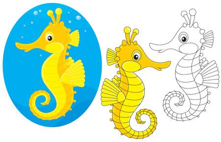 horsefish: caballito de mar Vectores