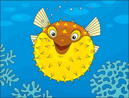 blowfish: Puffer nadando en un arrecife de coral Vectores