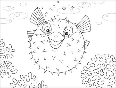 pez globo: Puffer pescado