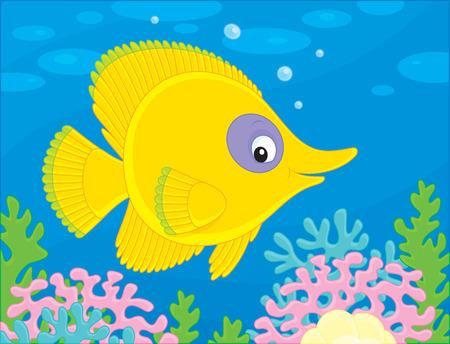 exotic fish: Amarillo peces ex�ticos nadando en un arrecife de coral Vectores