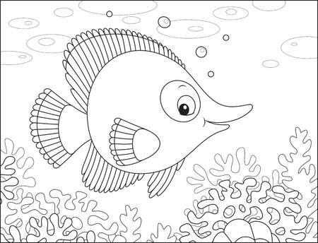 outline drawing of fish: Tropical fish Illustration