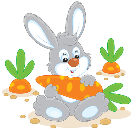 cottontail: Bunny with a carrot