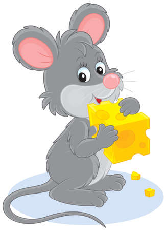 Little grey mouse gnawing a piece of cheese Vector