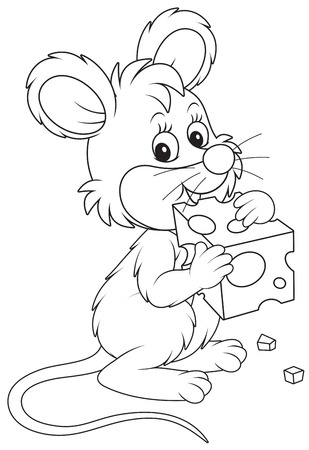 house mouse: Little mouse gnawing a piece of cheese