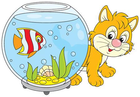 peces caricatura: Pequeño gatito rojo que recorre alrededor de un acuario