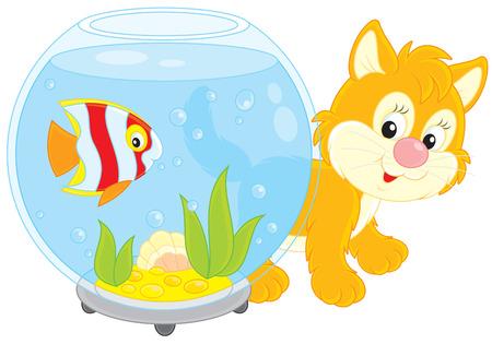 peces de acuario: gatito jugando con un pez de acuario