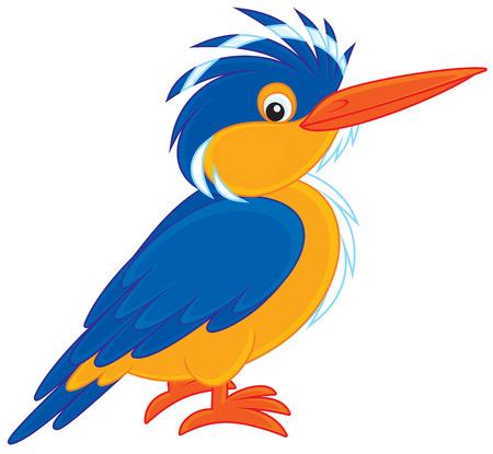 halcyon: Kingfisher Illustration