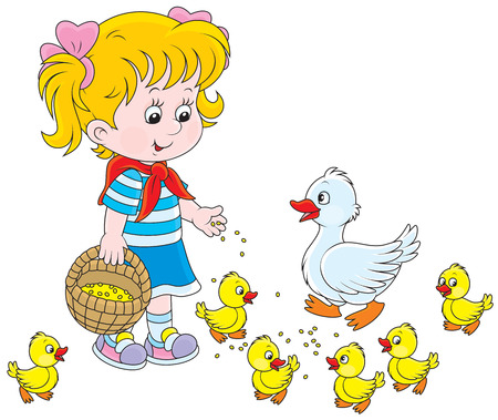 Little girl feeds a white duck and small ducklings Vector