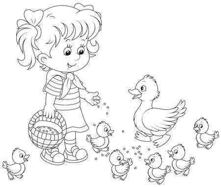 poult: Girl feeding ducklings