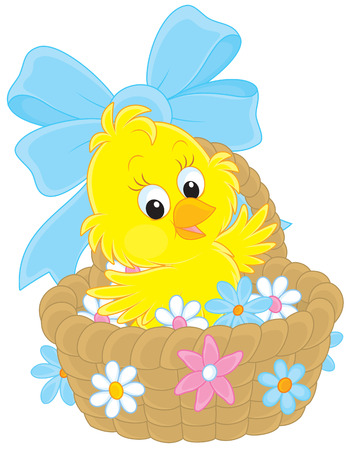 poult: Easter Chick in a basket with flowers Illustration