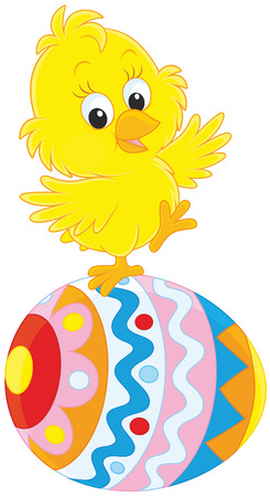 poult: Easter chick