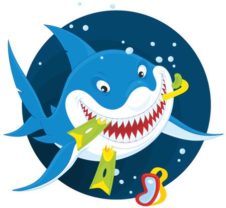 squalo bianco: Grande squalo bianco con un boccaglio e pinne