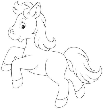 pony: Pony running