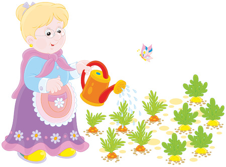 grandmamma: Granny watering vegetables Illustration