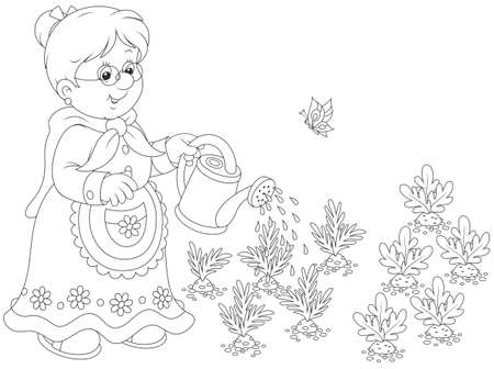 Granny watering vegetables Illustration