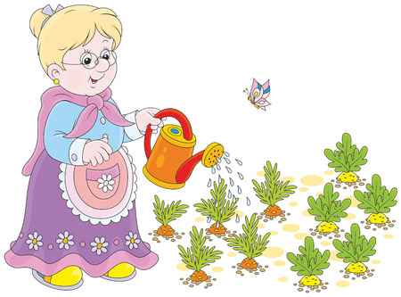 waters: Granny watering vegetables Illustration