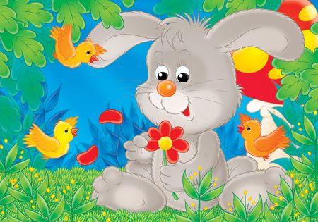 bir: Rabbit with a chamomile. Stock Photo