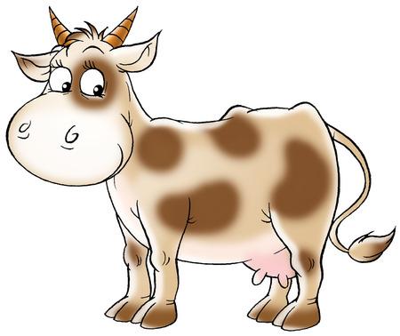 spotty: Spotty cow