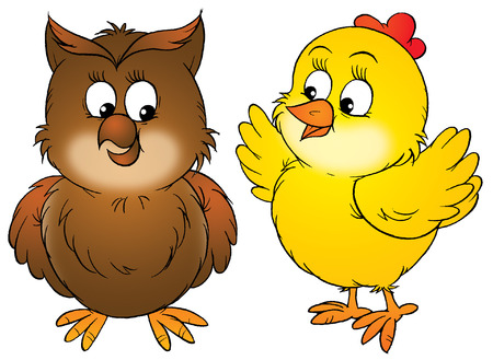 nestling birds: Chicken and owl