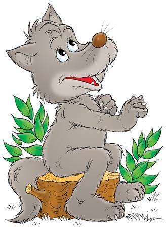 grey wolf: Grey wolf