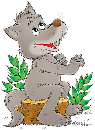 wail: Grey wolf