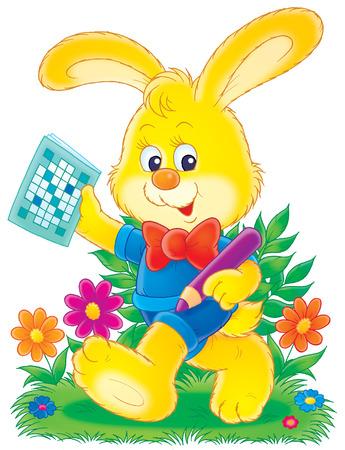 wild rabbit: Bunny