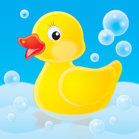 water fowl: Duckling