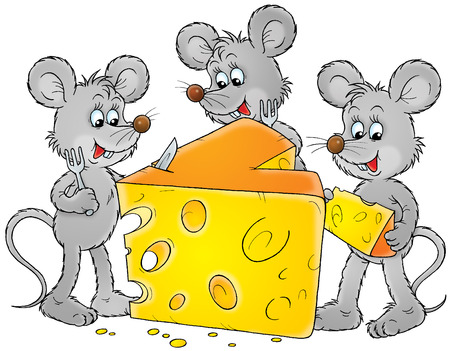 mice: Grey mice and delicious cheese
