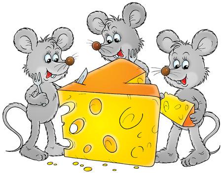 mice: Grey ratones y delicioso queso