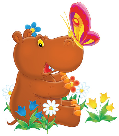 hippo: Hippopotamus and butterfly Stock Photo