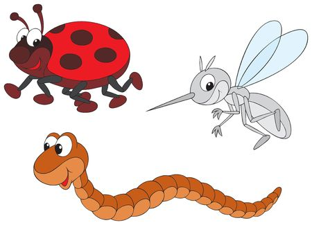 worm: Ladybug, mosquito and worm